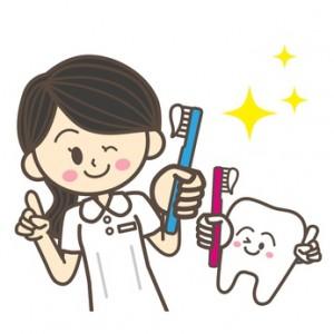 歯科衛生士と歯