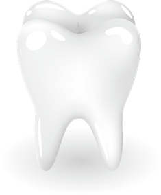歯のイメージ